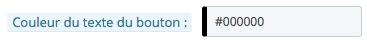 Illustration de l'option de définition de la couleur du texte du bouton